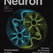neuron80_2.c1.indd
